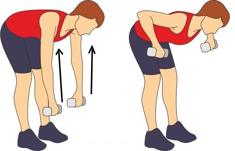 Bent Over Standing Dumbbell Row
