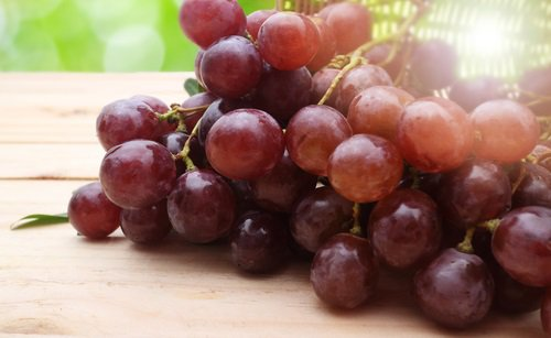 power-of-grape-seeds-2