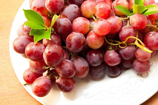 power-of-grape-seeds-3