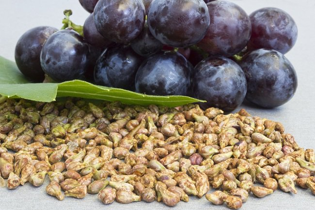 power-of-grape-seeds